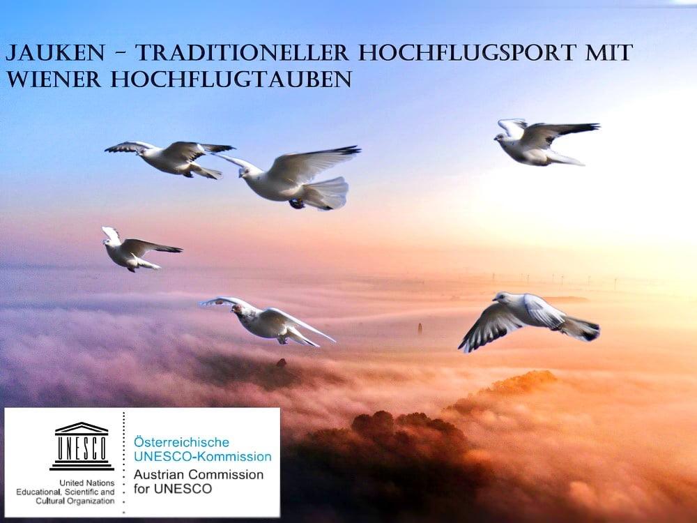 Jauken – Traditioneller Flugsport mit Wiener Hochflugtauben zum Weltkulturerbe erklärt.